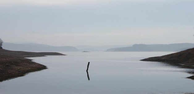 Güneydoğu'daki barajlardan sevindici haber