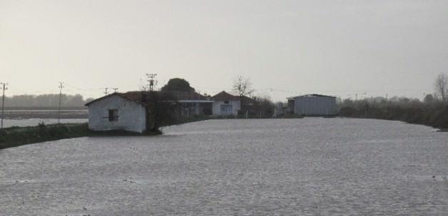 Menderes taştı ortalık göle döndü