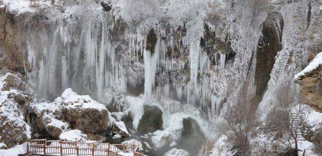 Soğuk hava şelaleyi dondurdu