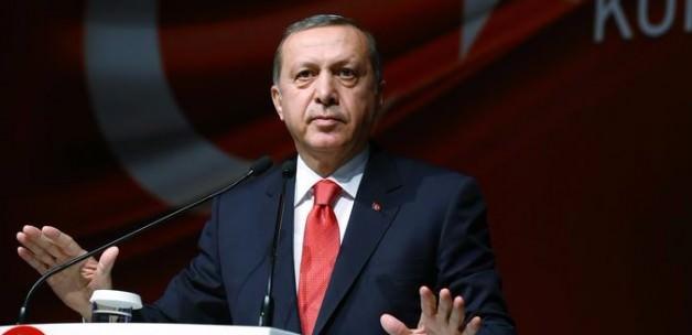 Erdoğan: Hükümet benimle her konuyu görüşmüyor