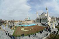 Türkiye'nin toplam lale üretiminin %98,5'ini Konya karşıladı