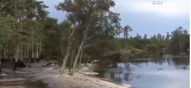 Ağaçlar 5 Saniyede Kayboldu! SubhanAllah!